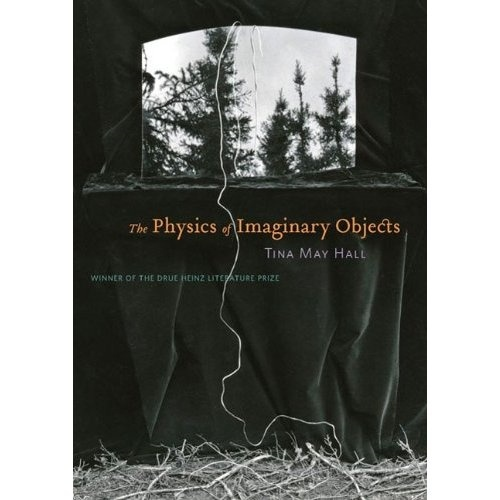 Cover art for The Physics of Imaginary Objects by Tina May Hall